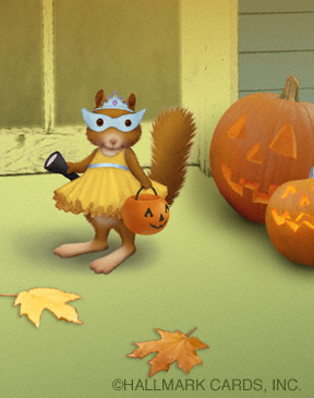 squirrel in costume website