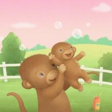 COVER Monkey